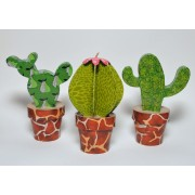 Cacti Collection Kit