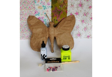 Large Butterfly Kit with Extras