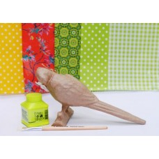 Polly the Parrot Kit