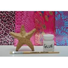 Starfish Collectible Kit